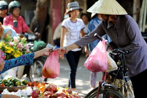 Ấn Độ cấm bán bao bì nilon để bảo vệ môi trường 1