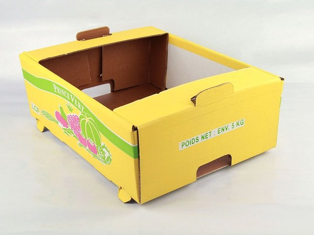 mẫu thùng carton thông dụng