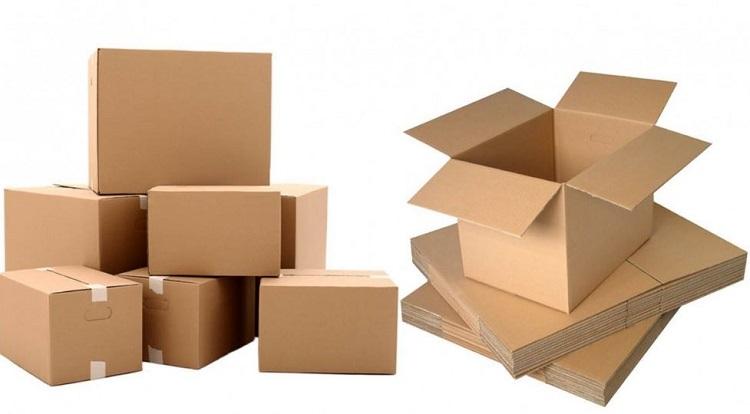 hộp carton đựng sản phẩm