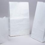 in ấn túi kraft trắng IBN